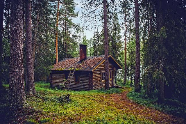 srub v lese.jpg