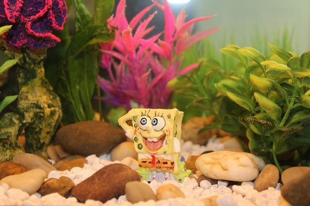hračka pod vodou