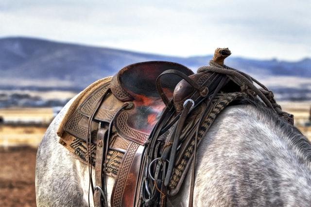 sedlo na koňském hřbetě